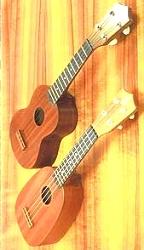hawaiian surf club ukuleles